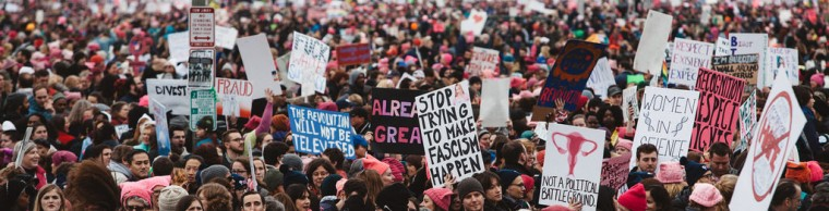 Political Sociology and Social Movements | Just another